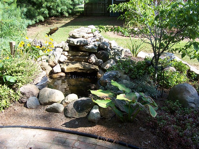 Diy fish pond flickr photo sharing for Homemade pond liner