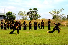 t'ai chi ch'uan(0.0), contact sport(1.0), sports(1.0), combat sport(1.0), martial arts(1.0), physical fitness(1.0),