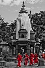 Buddhist Monks at Pashupatinath Temple