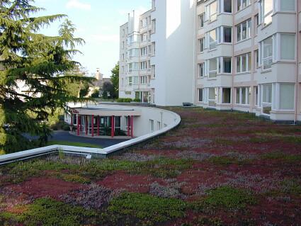 Toiture terrasse v g talis e ttv siplast con oit fabriq flickr phot - Toiture terrasse vegetalisee ...
