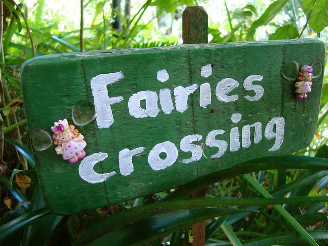 Fairies Crossing