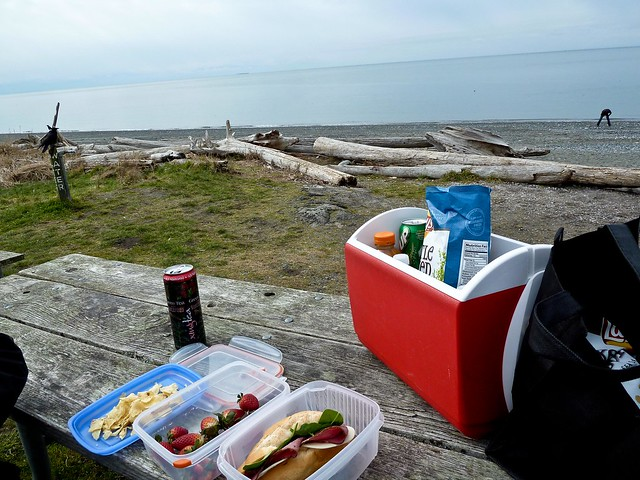 Having a Picknick on the beach looking out towards Juan De Fuca