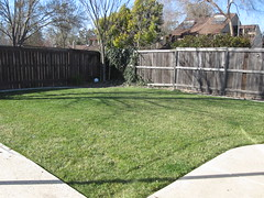 outdoor structure(0.0), shrub(0.0), wall(0.0), artificial turf(0.0), flooring(0.0), backyard(1.0), home fencing(1.0), fence(1.0), garden(1.0), grass(1.0), property(1.0), yard(1.0), estate(1.0), landscaping(1.0), real estate(1.0), lawn(1.0), walkway(1.0),
