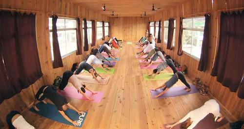 Yogalehrer-Ausbildung in Indien