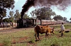 * Indien  # 8  Schmalspur  New Scan