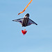Kite Fest 2011-0075.jpg