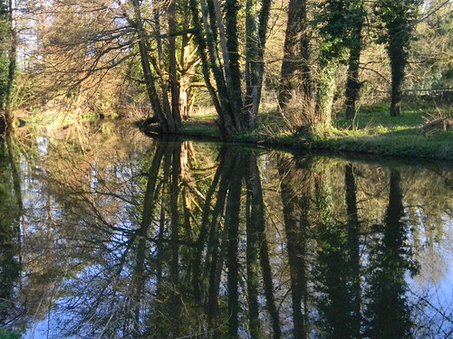 Reflections on the Wey