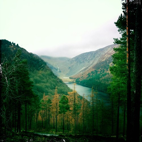Hiking The Wicklow Mountains VI