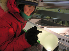 Examining an Ice Core at WAIS Divide