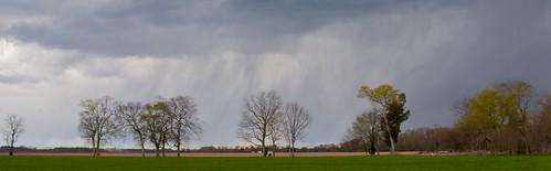 rain gardens virginia historic thunderstorm 2401050mm brandonplantation