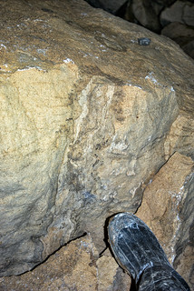 Stromatolite 2, Blue Spring Cave, White Co, TN
