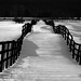 black fence by ..CH..