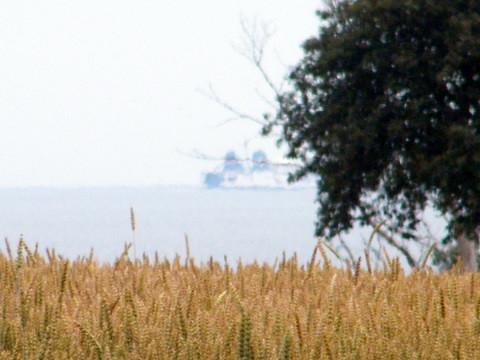 natur baltic lanscape landskap svarte stigvis
