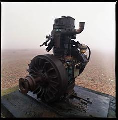Wrecks in the Mist