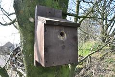 outhouse(0.0), birdhouse(1.0),