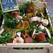 Wild mushrooms ©andrewmalone
