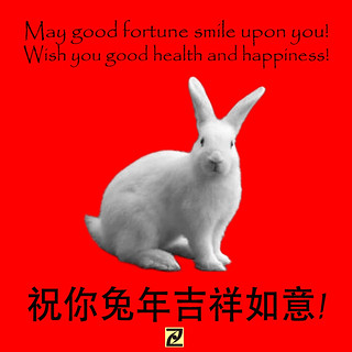 Rabbit Year Wishes