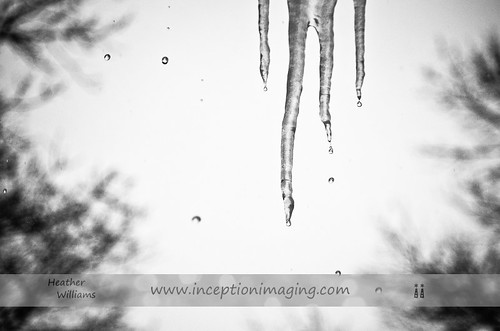 """Grey"" Icicles"