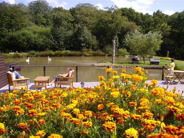 L'étang et ses terrasses suspendues face à l'étang et aux cygnes majestueux, les chambres d'hotes le finistere sud en bretagne, proche de la pointe du raz.