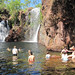 Outback Watering Hole by Australia / New Zealand Travel