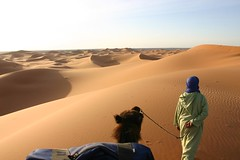 Passeio de camelo pelas dunas do deserto