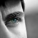Blue eye by ChichoteR34