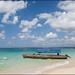 Small photo of Zanzibar, Prison Island