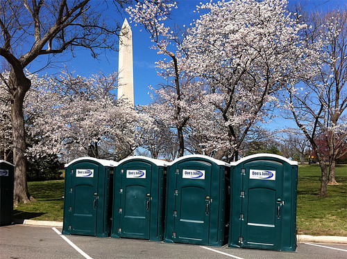 Cherry Blossom Festival Porta-Potties