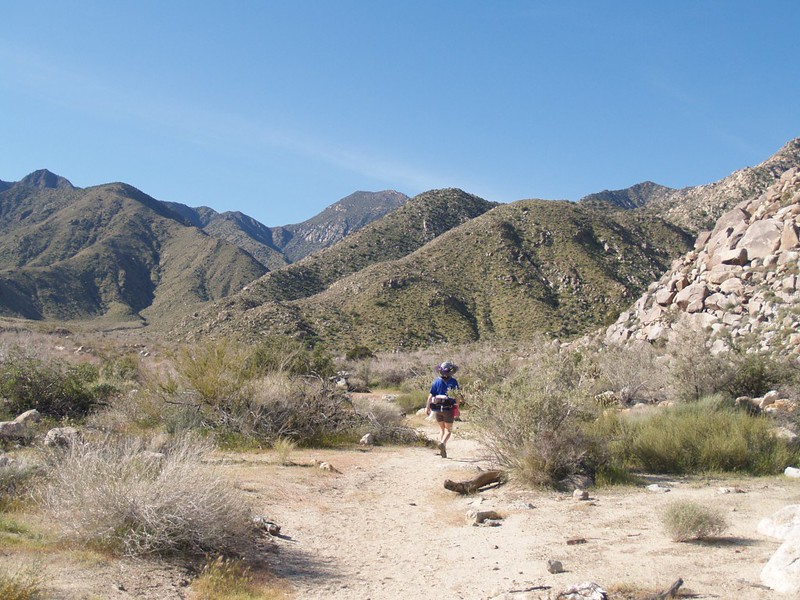 Heading up Indian Canyon, Cougar Canyon to the right