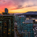 Coal Harbour by Alexis Birkill Photography