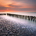 Breaking the Water by Harold van den Berge