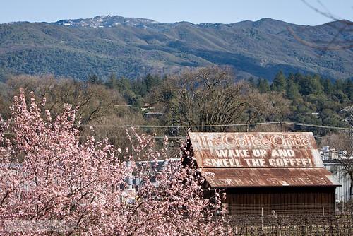 winter northerncalifornia spring ukiah ghostsign mendocinocounty mixedweather
