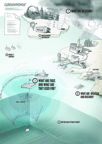 Greenpeace Oceans Campaign / final sketch