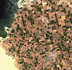 Earth from Space: Irrigated Desert