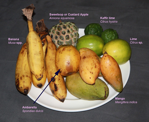 Fruit plate from market