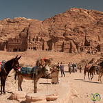 Donkey Rides at the Royal Tombs - Petra, Jordan