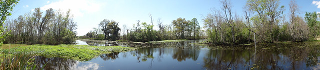 Upper Kenta Canal