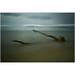 Kraken by .brianday