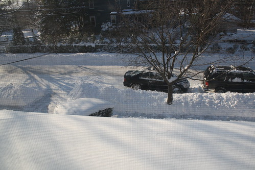 Snow Day, January 12, 2011
