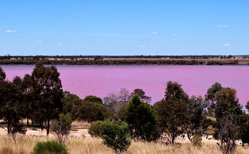 Pink Lake near Dimboola, VIC, Australia