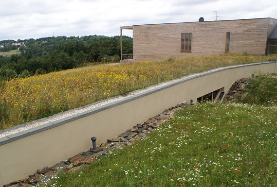 toiture terrasse jardin flickr photo sharing