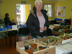 Fran at the seed swap