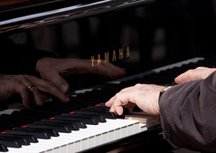 keyboard player, musician, pianist, piano, musical keyboard, keyboard, jazz pianist, player piano,