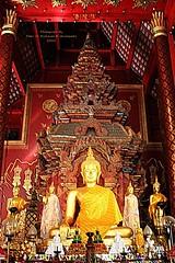 20101122_1991 Wat Chiang Man. วัดชียงมั่น