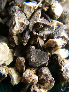 Black Cohosh - ORGANIC - Hot Flashes, Menopause, Menstrual Problems, HRT from MisticalAcScents.etsy.com