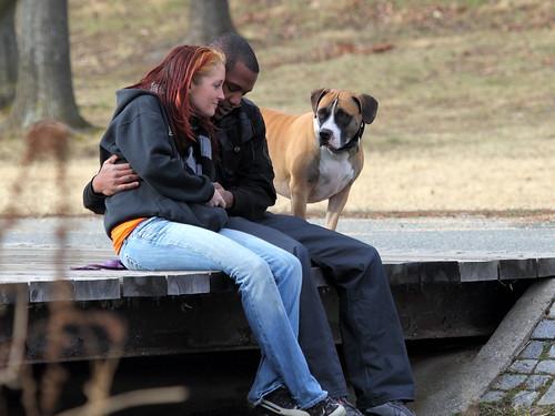 Happy Couple Plus Dog