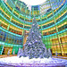 Christmas Tree-HDR by rvcfoto