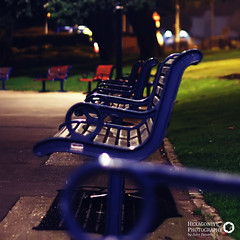 74/365 Park Benches