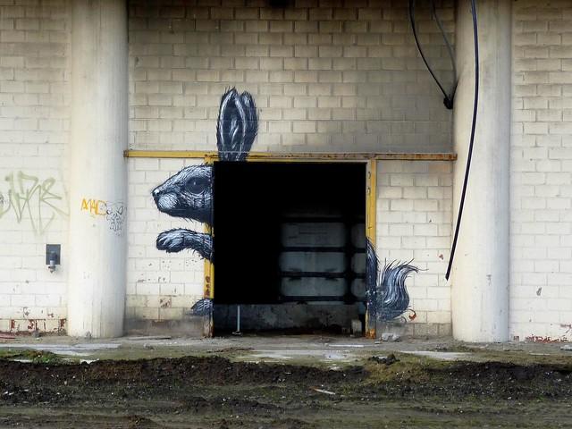 graffiti | roa | gent