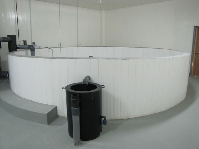 Octaform tank built with watertight wall panels